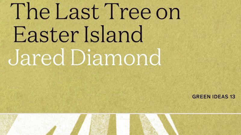 The Last Tree on Easter Island copy 2