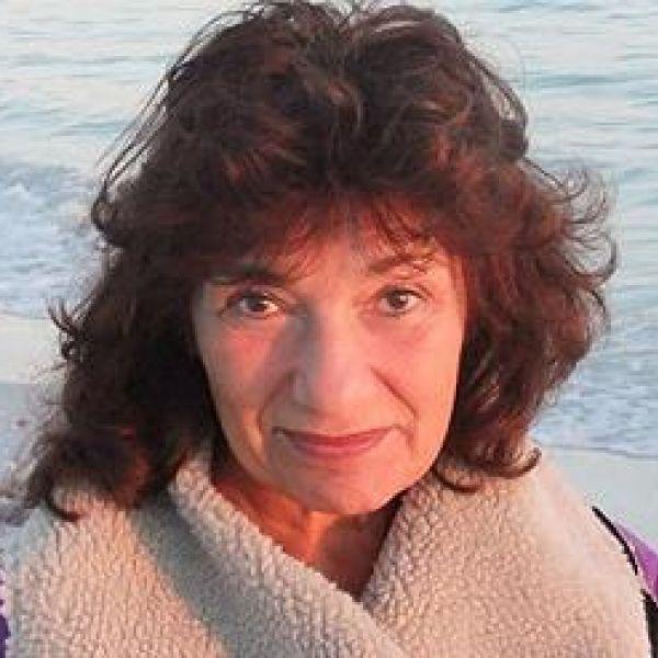 Lisa Appignanesi bio template